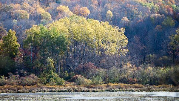 Tauscher Pond Hills Creek State Park