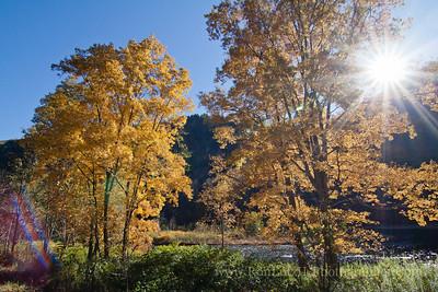 Pine Creek Gorge Trail Colton State Park
