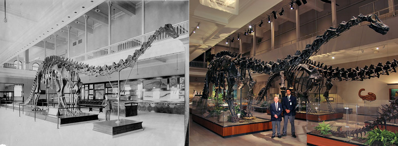 These two photo were taken nearly 100 years apart. To the left is an early photo of a guard soon after Dinosaur Hall opened. To the right is a photo I took of the last guards to watch the hall before being completely taken down and replaced.