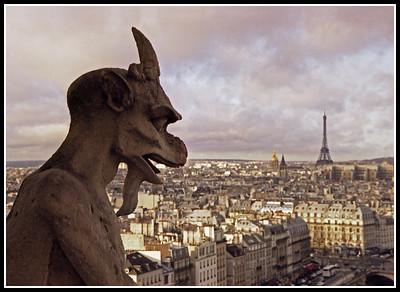 NotreDameGargoyle,Paris