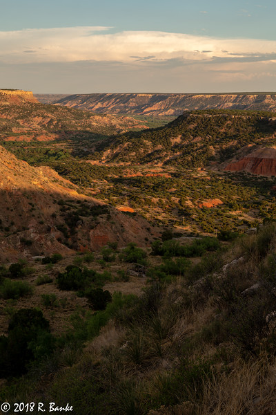 Evening Light, Palo Duro Canyon State Park