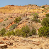 Juniper Cliffside Trail, Palo Duro Canyon State Park