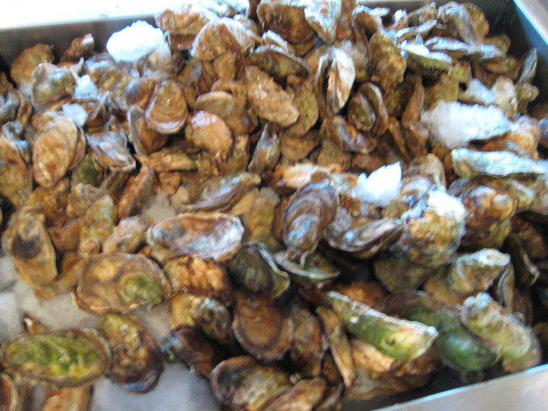 Malpeque oysters at Carr's.