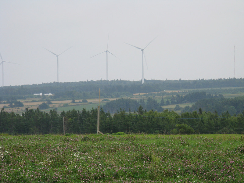Wind power  - and I happen to think they are pretty.