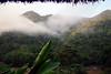 Fog over the Rio Huallaga in the morning