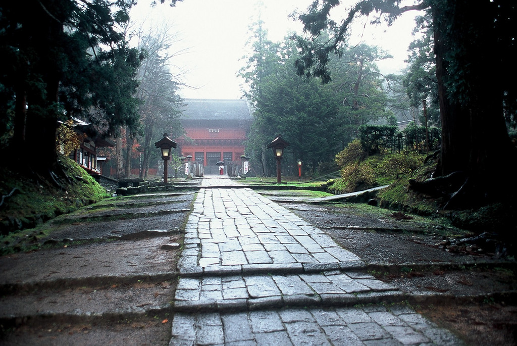 Trees, leaves, temples and shrines<br /> A beautiful timeless place<br /> Hike Japan calls us back<br /> <br /> Deslys Hunter  Imperial Pilgrimage Route  May 2008