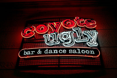 Coyote Ugly (New York-New York) Las Vegas 2006
