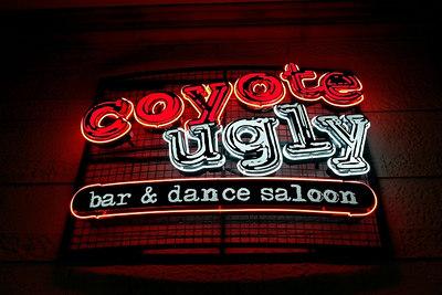 Coyote Ugly (New York-New York) Las Vegas 2006
