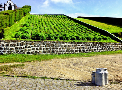 """MILK READY FOR PICKUP"", SAO MIGUEL ISLAND, VILLA FRANCA DO CAMPO, AZORES"
