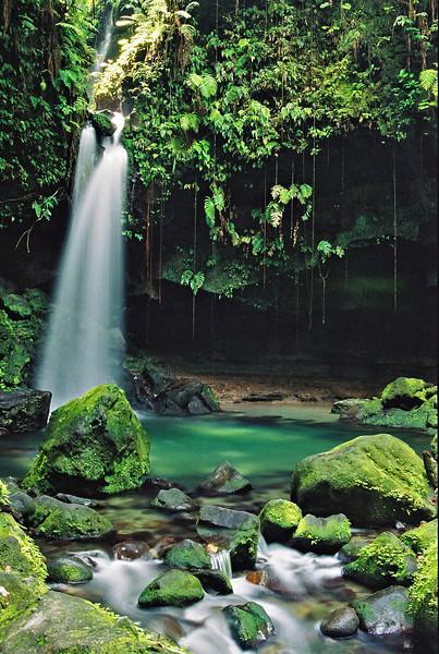 Emerald Pool OM4T  pol, Kod 100UC