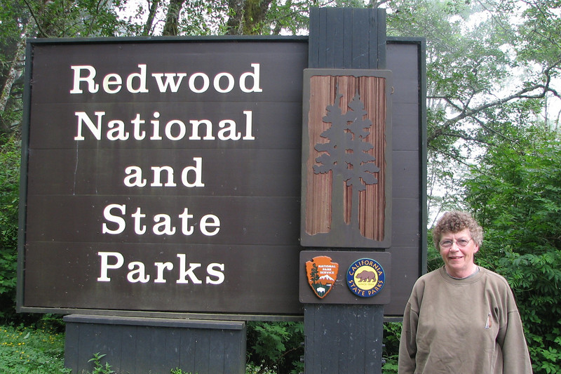 Tuesday morning we went into Redwood territory south of Crescent City CA.