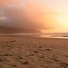 Foggy sunrise, Cape Lookout State Park, Oregon