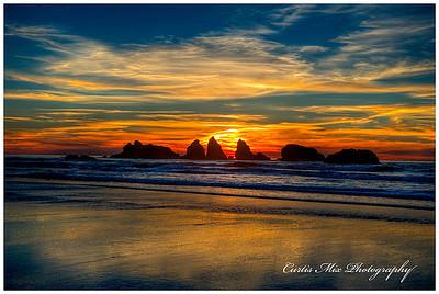 Oregon Islands N.W.R.