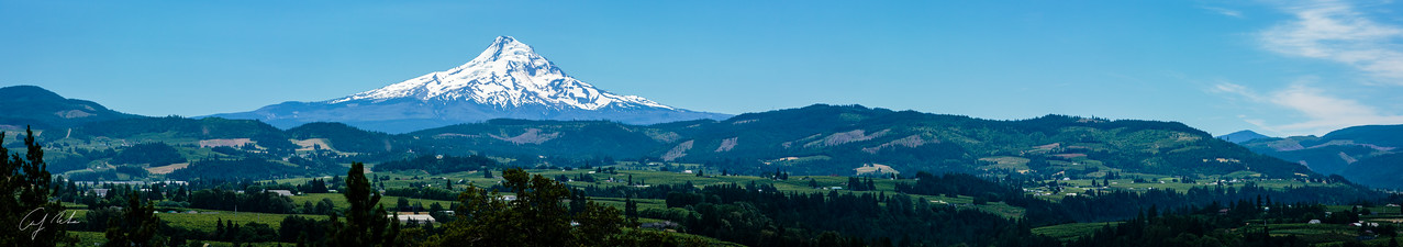 Mt. Hood and verdant surround