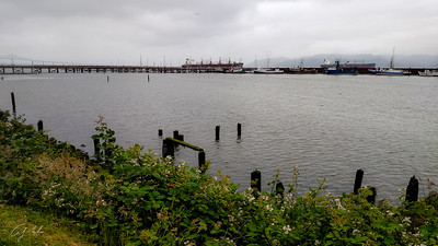 Astoria-Megler Bridge (far left), ships (not boats!), and an Astoria harbor