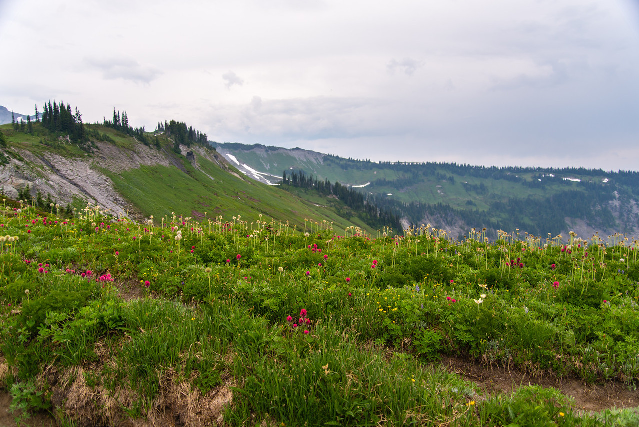 Flowers line the rim of the bowl