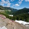 Mt Rainer State Park