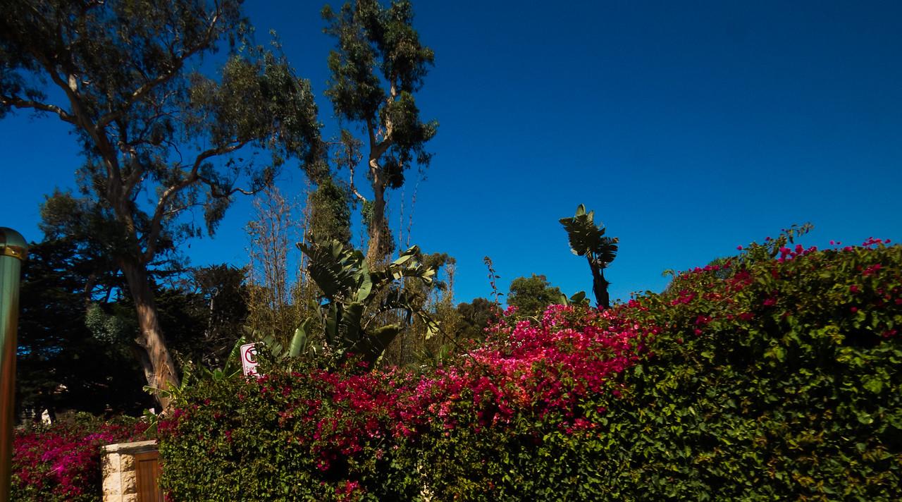 2016-09-24 Santa Barbara-38