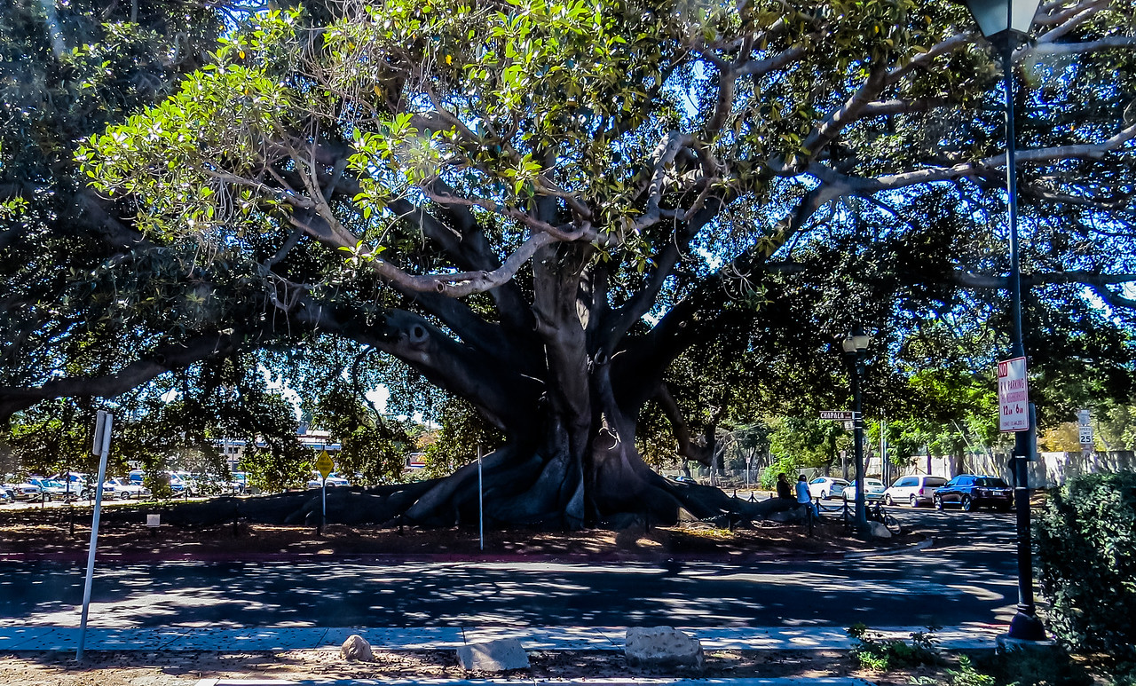 2016-09-24 Santa Barbara-1-13