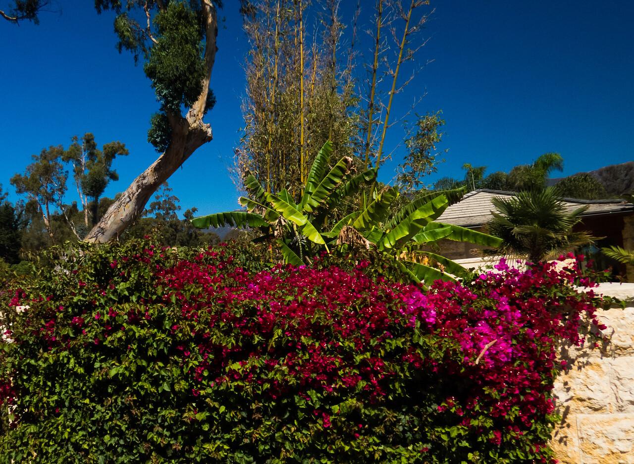 2016-09-24 Santa Barbara-39