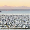 Elliott Bay Marina at the south tip of Magnolia - Seattle<br /> (reduced size 11-shot pano)