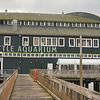Seattle Seaquarium