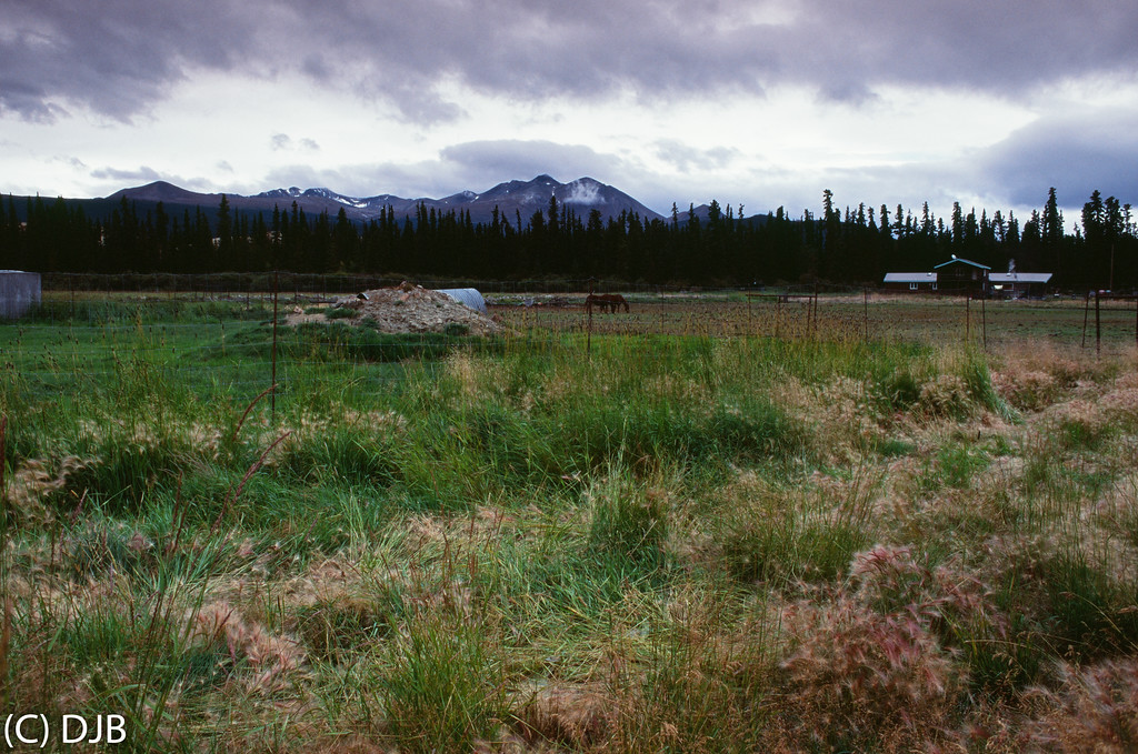 Caribou Crossing Trading Post, Carcross, Yukon, Canada.