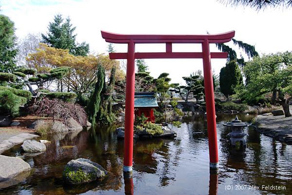Japanese Pond - Point Defiance Park