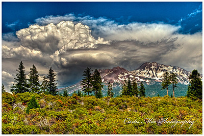 Thunder clouds gather over Mt. Shasta.