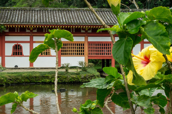 Byodo-In Temple & the Hibiscus Flower