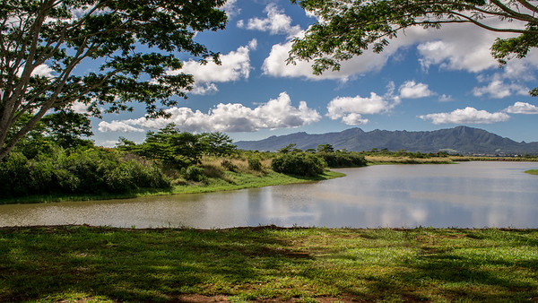Lake and the Mokuleia Forest Reserve