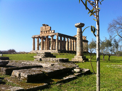The pre-Roman ruins at Paestum turned out to be quite impressive, and less than a two-hour ride from Naples.