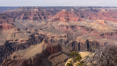 Powell Point view Grand Canyon