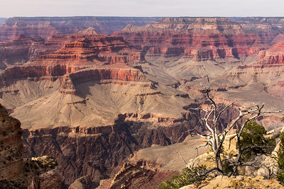 Grand Canyon  Powell point