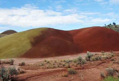 Undulating Hills