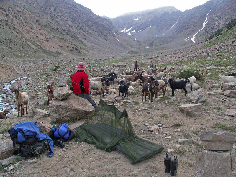 Rumber Valley - Chitral Goi NP Trek - Day 1
