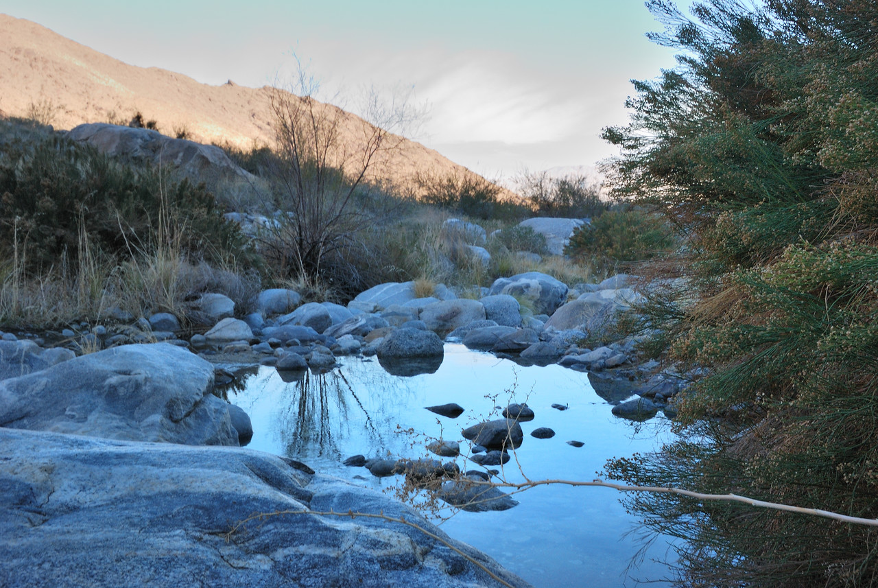 Small pond in Tahquitz Canyon