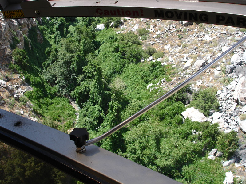 The tram ascends a very steep canyon filled with a nice stream.  A dense mat of wild grape exploits the precious water, providing a strong contrast with the surrounding parched rock.