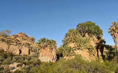 Palm Springs & Vicinity