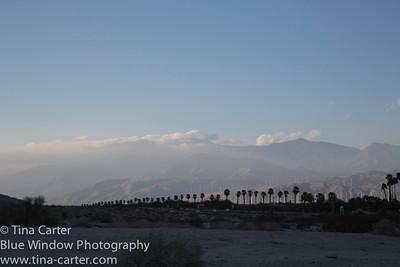 Palm Springs & wet L.A.