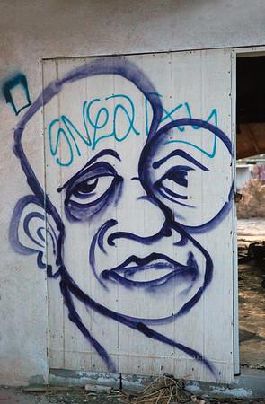 Graffitti on Graffiti_Salton Sea 6701