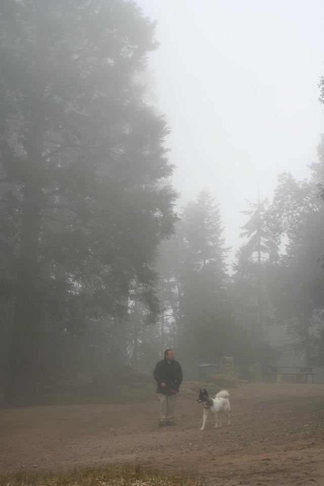 4/8/07 Silvercrest Picnic Area, Palomar Mountain State Park, N. San Diego County, CA