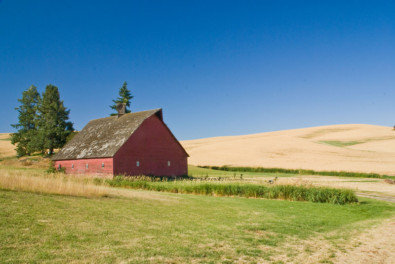 Barn near Paridise Ridge