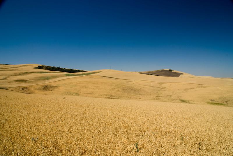 View from Paridise Ridge