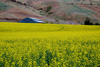 Palouse-Snake River-Spokane