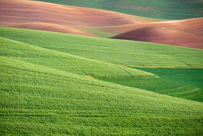 Farmland textures