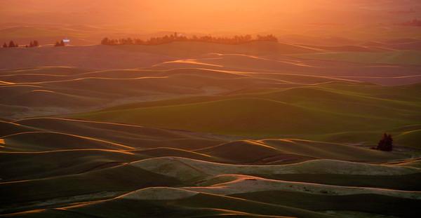 Magic hour lighting on the farmland