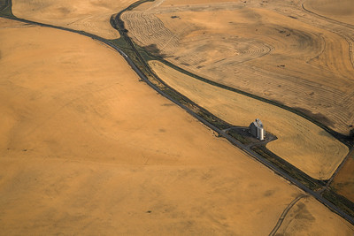 Palouse, Washington State, US -1648