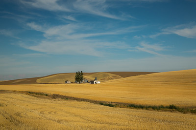 Palouse, Washington State, US -9345