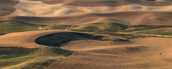 Palouse, Washington State, US -2062